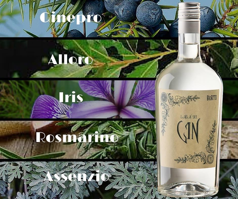 Distillato Gin Berto Distilleria Quaglia