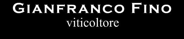 Cantina vitivinicola Gianfranco Fino