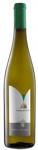 Vino bianco Muller Thurgau Trentino