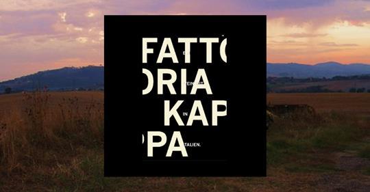 Cantina vitivinicola Fattoria Kappa