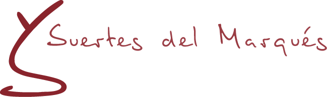 Cantina vitivinicola Suertes del Marques
