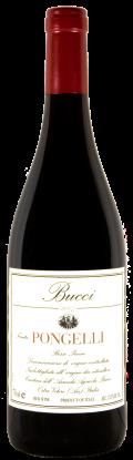 Vino rosso Tenuta Pongelli Rosso Piceno