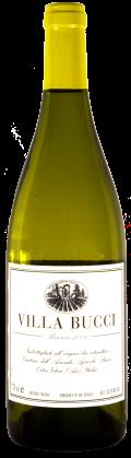 Vino bianco Villa Bucci Riserva