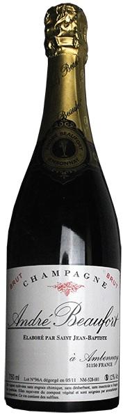 Vino champagne Ambonnay Brut